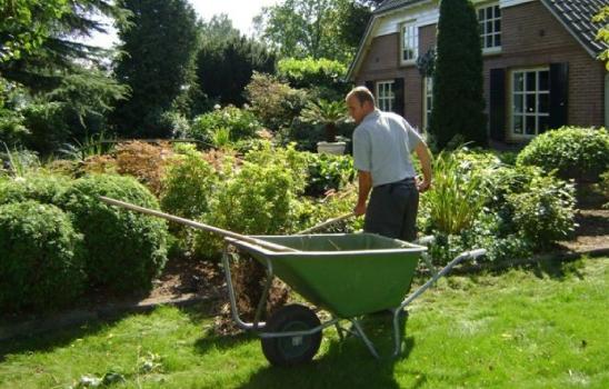 hulp tuinonderhoud